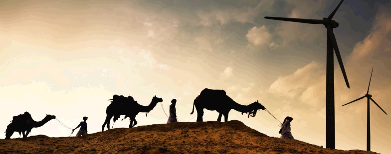 header kamelen
