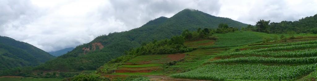 header landschap